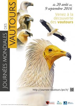 affiche journée mondiale des vautours