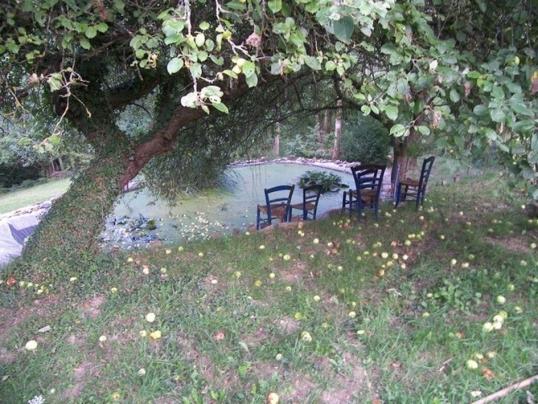 photo jardin des enclos